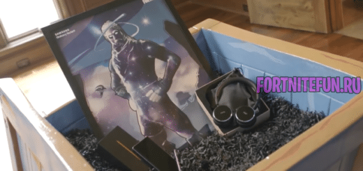 Ninja распаковка Galaxy Skin